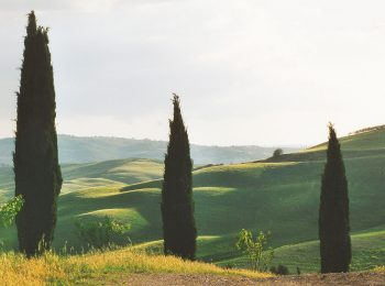 03-val-d'orcia-gallery