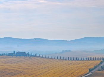 07-val-d'orcia-gallery