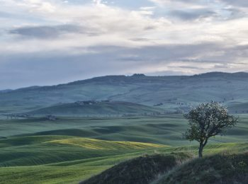 16-val-d'orcia-gallery