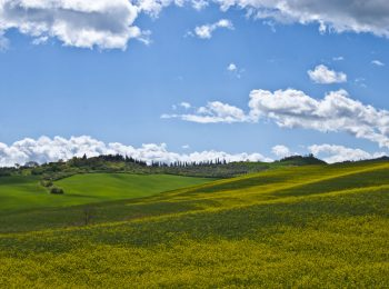 18-val-d'orcia-gallery