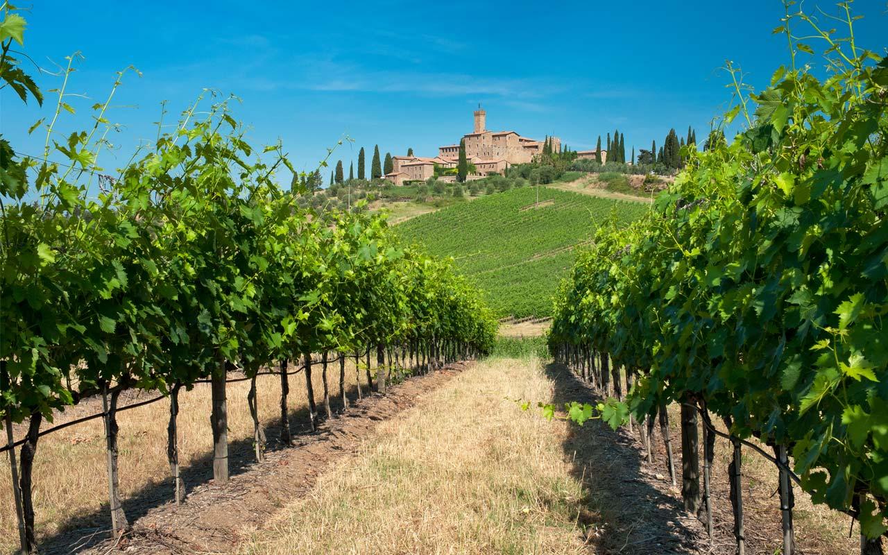 2017_Montalcino_Castello_poggio_alle _mura_Banfi@free_low